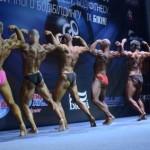 <!--:ru-->Календарь соревнований по бодибилдингу и фитнесу IFBB 2012 в России и Мире<!--:--><!--:ua-->Календар змагань з бодибілдингу та фітнесу IFBB 2012 в Росії та Світі<!--:-->