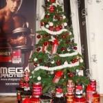 <!--:ru-->Поздравляем с рождественско — новогодними праздниками!<!--:--><!--:ua-->Вітаємо з різдв'яно — новорічними святами!<!--:-->