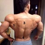 <!--:ru-->Супер-спина: упражнения для тренировки всех мышц<!--:--><!--:ua-->Супер-спина: вправи для тренування усіх м'язів <!--:-->