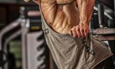 Турнік і бруси –  що дадуть такі тренування?